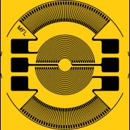 C15-350M-XX-Y